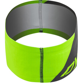 Dynafit Performance Dry 2.0 Headband dna green
